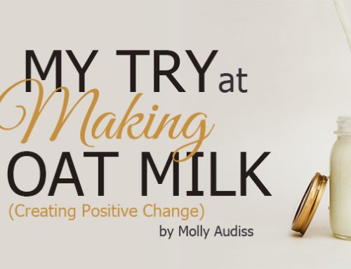 My Try at Making Oat Milk-Creating Positive Change